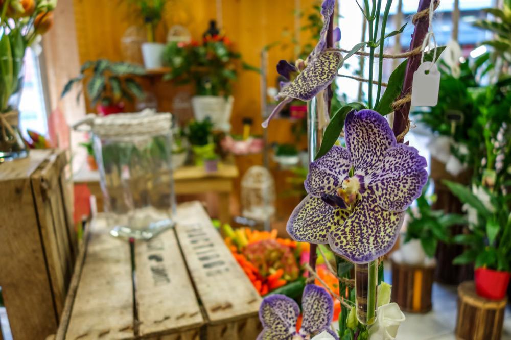 angy-fleurs-bourg-en-bresse-ceyzeriat-fleuriste-14