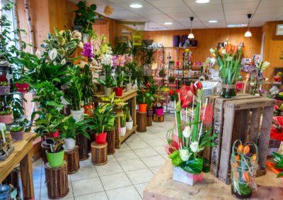 angy-fleurs-bourg-en-bresse-ceyzeriat-fleuriste-39